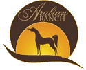 Arabian Ranch